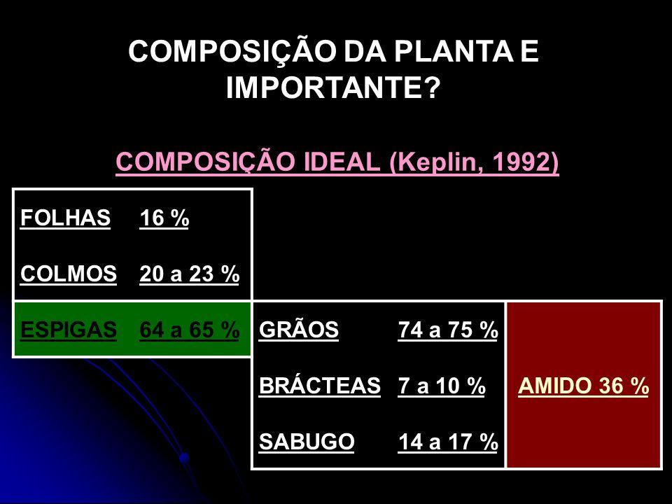 COMPOSIÇÃO DA PLANTA E IMPORTANTE? COMPOSIÇÃO IDEAL (Keplin, 1992) FOLHAS16 % COLMOS20 a 23 % ESPIGAS64 a 65 %GRÃOS74 a 75 % AMIDO 36 % BRÁCTEAS7 a 10