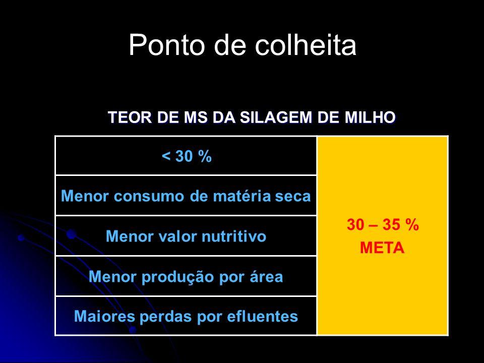TEOR DE MS DA SILAGEM DE MILHO < 30 % 30 – 35 % META Menor consumo de matéria seca Menor valor nutritivo Menor produção por área Maiores perdas por ef