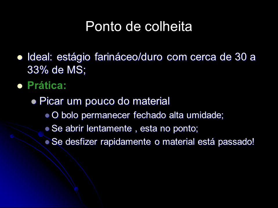 Ideal: estágio farináceo/duro com cerca de 30 a 33% de MS; Ideal: estágio farináceo/duro com cerca de 30 a 33% de MS; Prática: Picar um pouco do mater