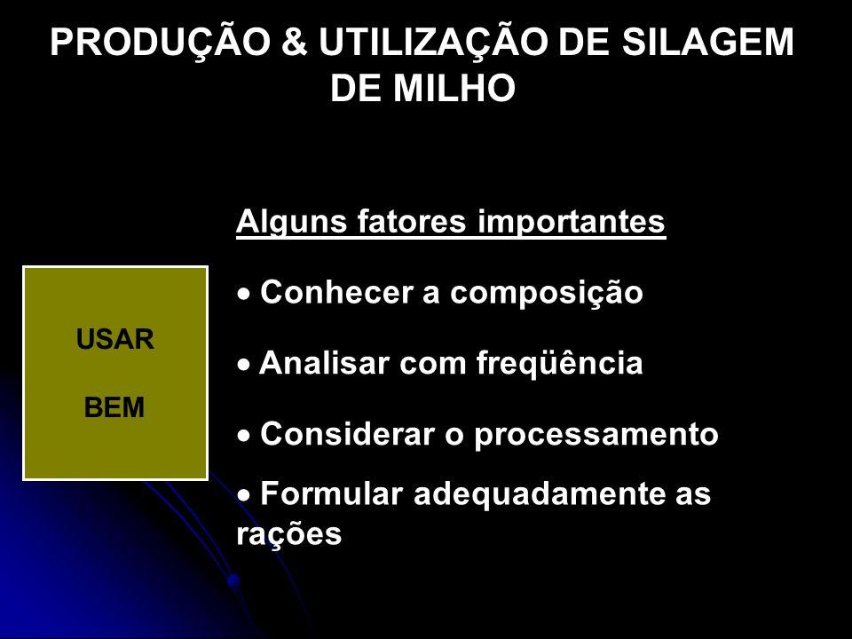 PRODUÇÃO & UTILIZAÇÃO DE SILAGEM DE MILHO USAR BEM Alguns fatores importantes Conhecer a composição Analisar com freqüência Considerar o processamento