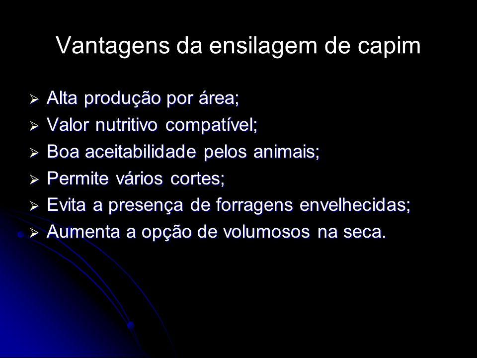 Vantagens da ensilagem de capim Alta produção por área; Alta produção por área; Valor nutritivo compatível; Valor nutritivo compatível; Boa aceitabili