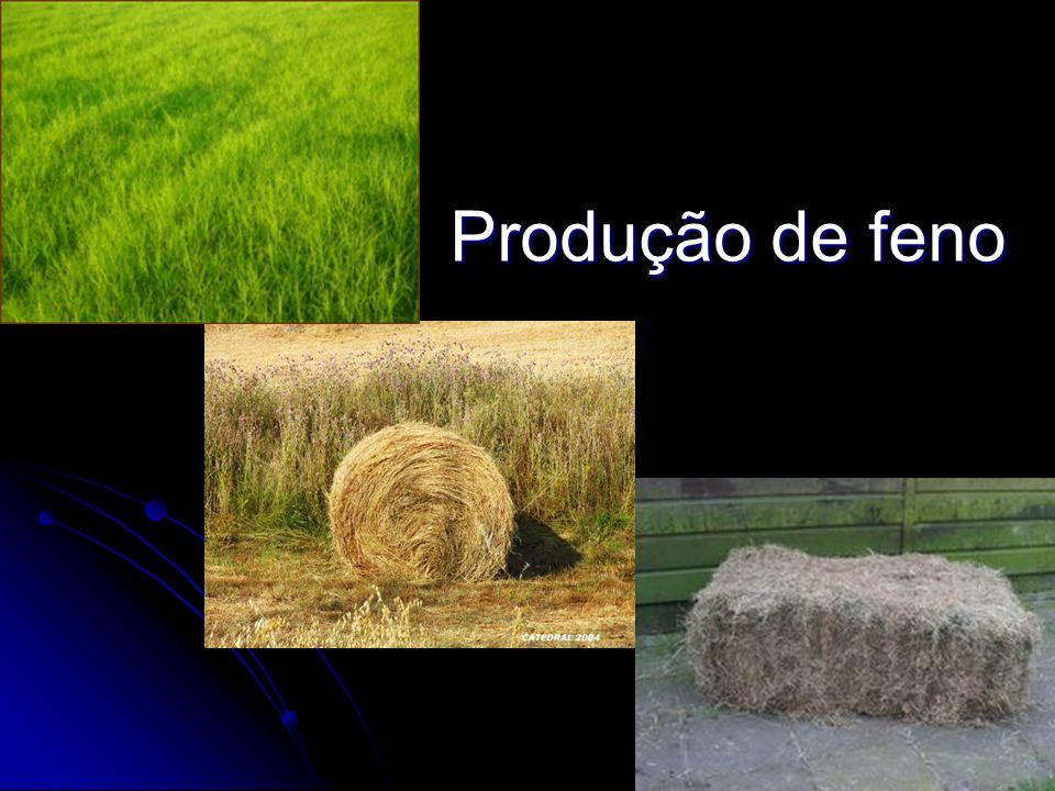 Produção de feno