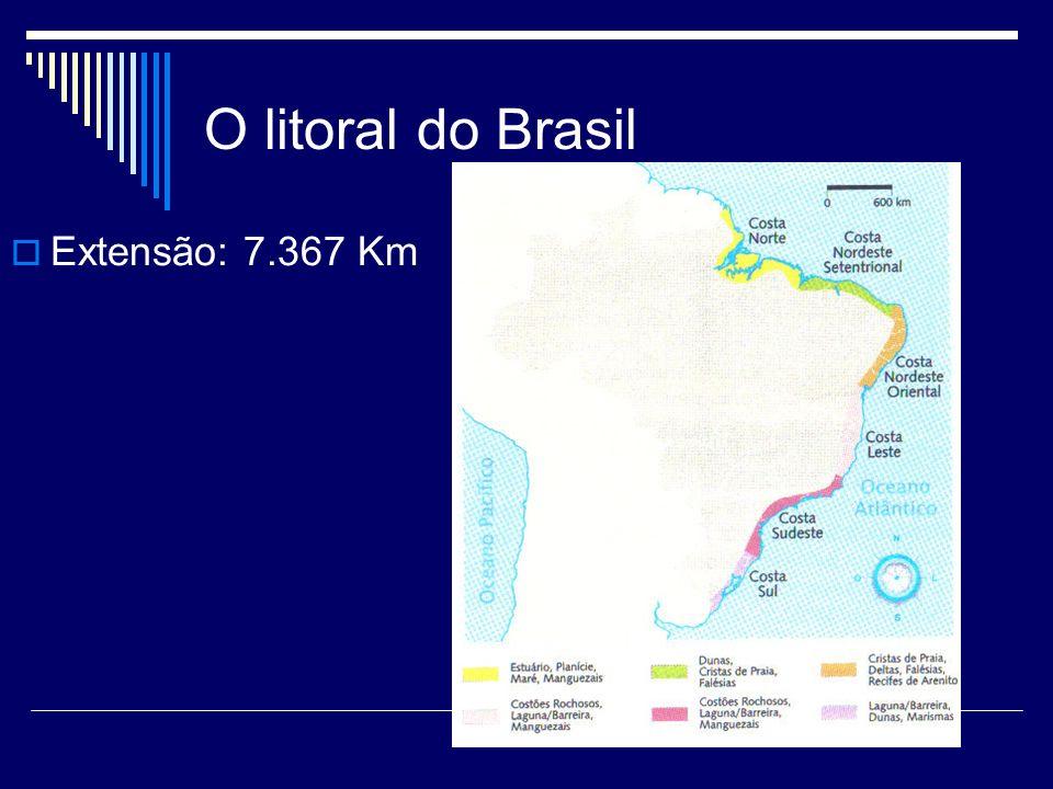 O litoral do Brasil Costa Norte ou Equatorial Amazônica.