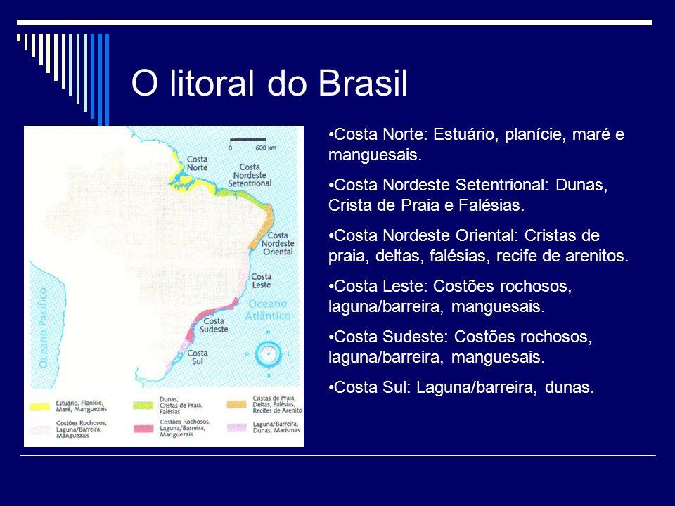 O litoral do Brasil Costa Norte: Estuário, planície, maré e manguesais. Costa Nordeste Setentrional: Dunas, Crista de Praia e Falésias. Costa Nordeste