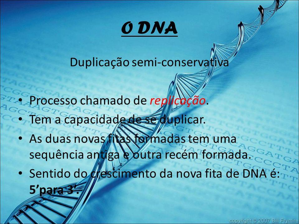 O DNA Duplicação semi-conservativa Processo chamado de replicação. Tem a capacidade de se duplicar. As duas novas fitas formadas tem uma sequência ant