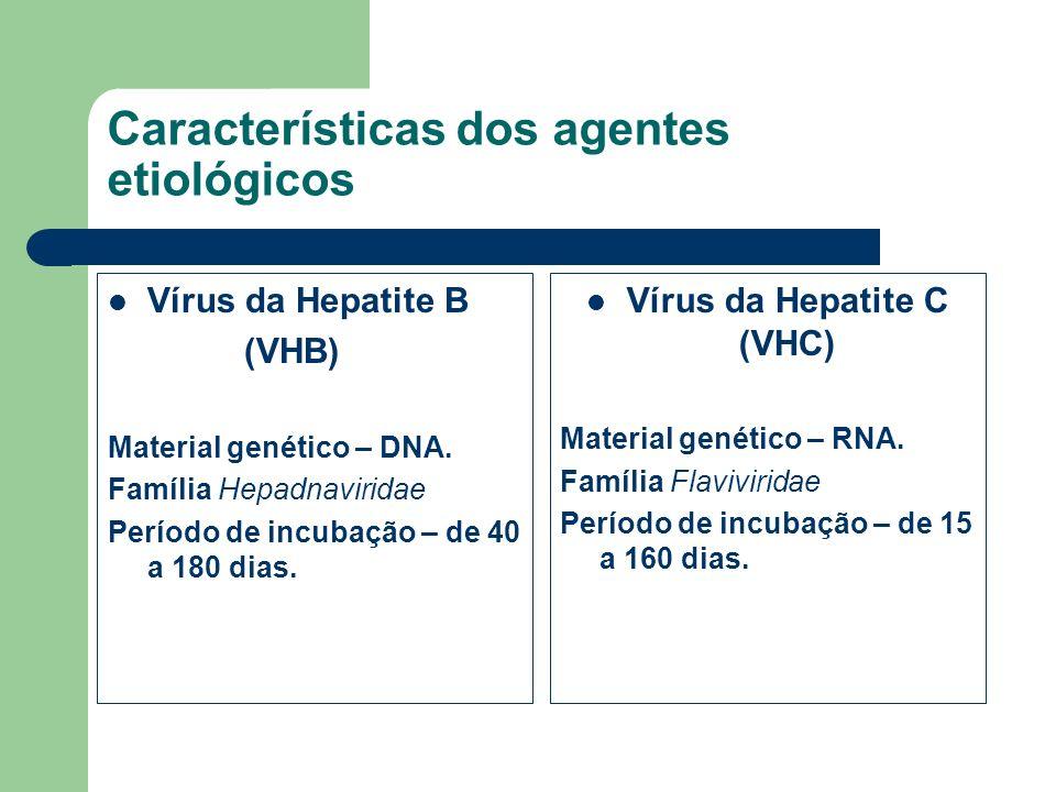 Características dos agentes etiológicos Vírus da Hepatite B (VHB) Material genético – DNA. Família Hepadnaviridae Período de incubação – de 40 a 180 d