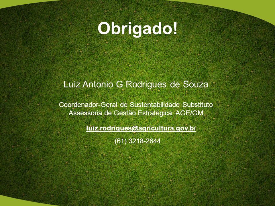 Obrigado! Luiz Antonio G Rodrigues de Souza Coordenador-Geral de Sustentabilidade Substituto Assessoria de Gestão Estratégica AGE/GM (61) 3218-2644 lu