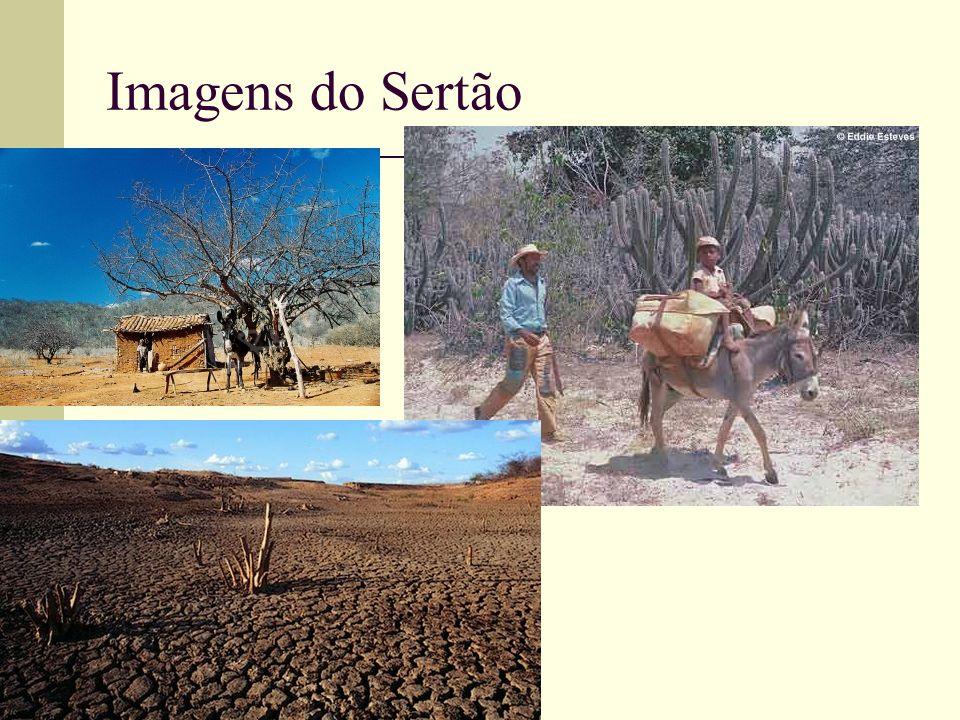 Imagens do Sertão