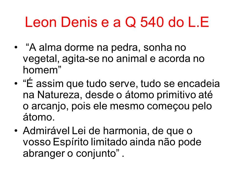 Leon Denis e a Q 540 do L.E A alma dorme na pedra, sonha no vegetal, agita-se no animal e acorda no homem É assim que tudo serve, tudo se encadeia na