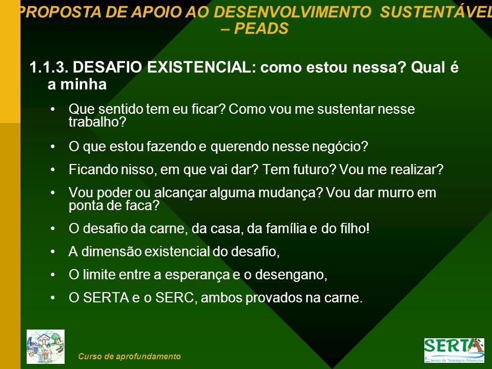 PROPOSTA DE APOIO AO DESENVOLVIMENTO SUSTENTÁVEL – PEADS Curso de aprofundamento 1.2.