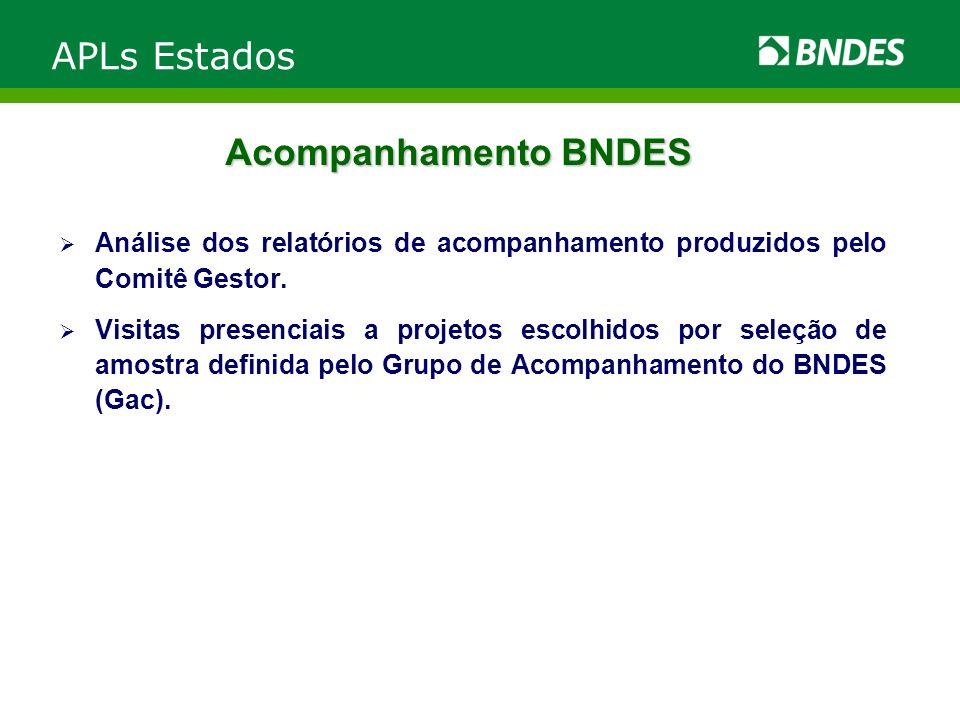 Acompanhamento BNDES Análise dos relatórios de acompanhamento produzidos pelo Comitê Gestor. Visitas presenciais a projetos escolhidos por seleção de