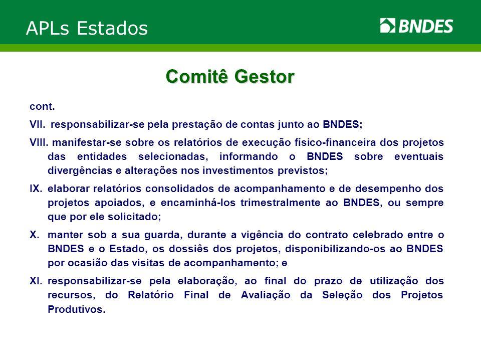 Comitê Gestor cont. VII. responsabilizar-se pela prestação de contas junto ao BNDES; VIII. manifestar-se sobre os relatórios de execução físico-financ
