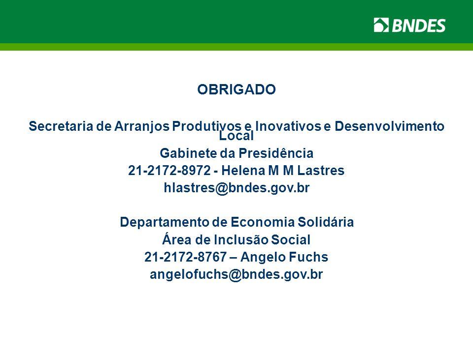 OBRIGADO Secretaria de Arranjos Produtivos e Inovativos e Desenvolvimento Local Gabinete da Presidência 21-2172-8972 - Helena M M Lastres hlastres@bnd