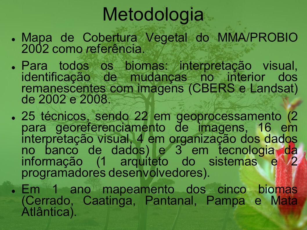 Metodologia Mapa de Cobertura Vegetal do MMA/PROBIO 2002 como referência. Para todos os biomas: interpretação visual, identificação de mudanças no int