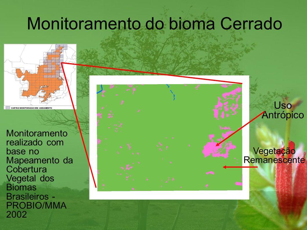 Cálculo das emissões de CO2 associadas ao desmatamento no bioma Cerrado no período 2002-2008 Desmatamento médio anual em 2002-2008 – 21.260 km2 Quantidade média de Carbono no Cerrado – 45 toneladas/hectare Emissão média anual de CO2 em 2002-2008 – 350 milhões toneladas