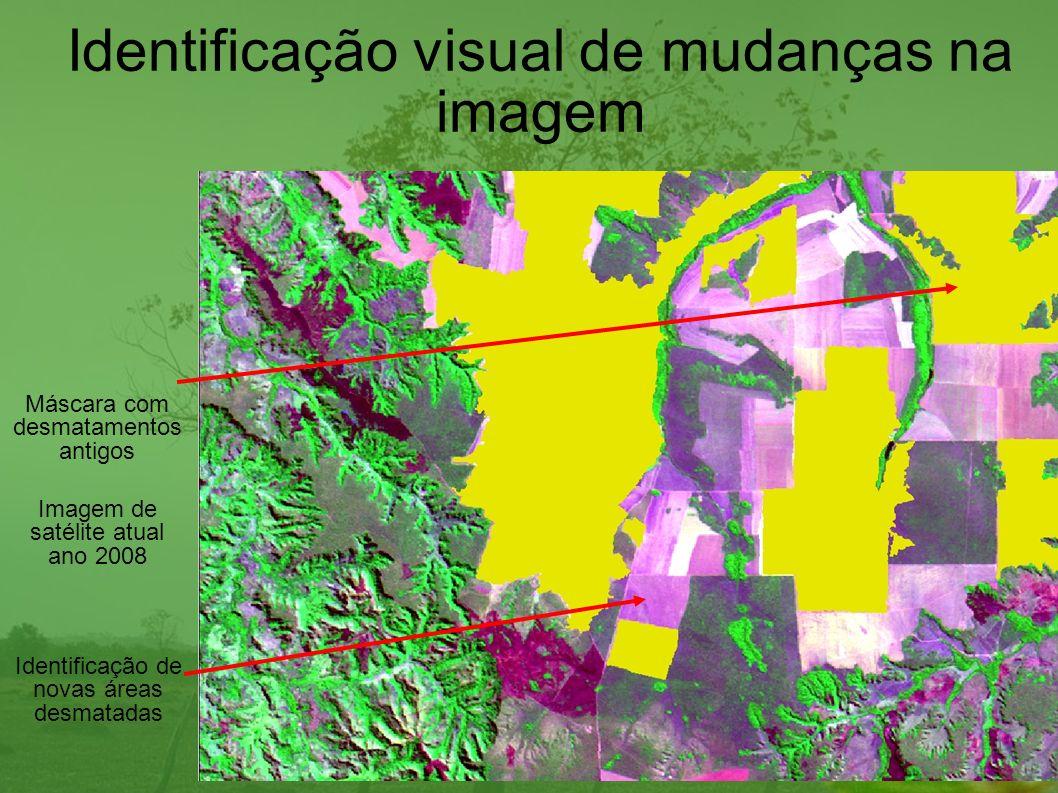 Distribuição do desmatamento em 2008 no Cerrado Vegetação Desmatamento Corpos dágua