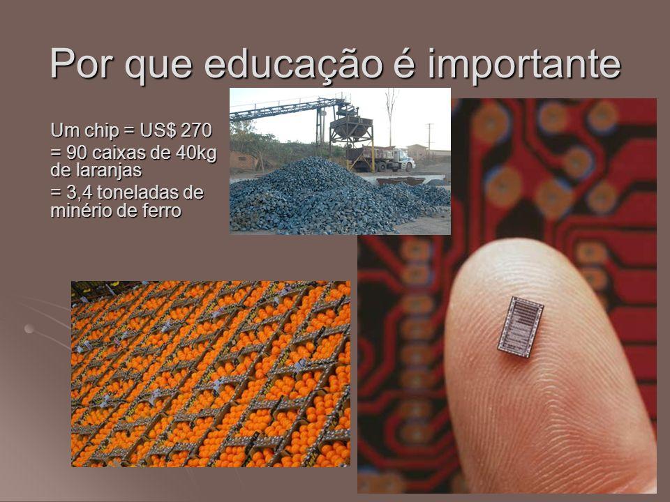 Por que educação é importante Um chip = US$ 270 = 90 caixas de 40kg de laranjas = 3,4 toneladas de minério de ferro