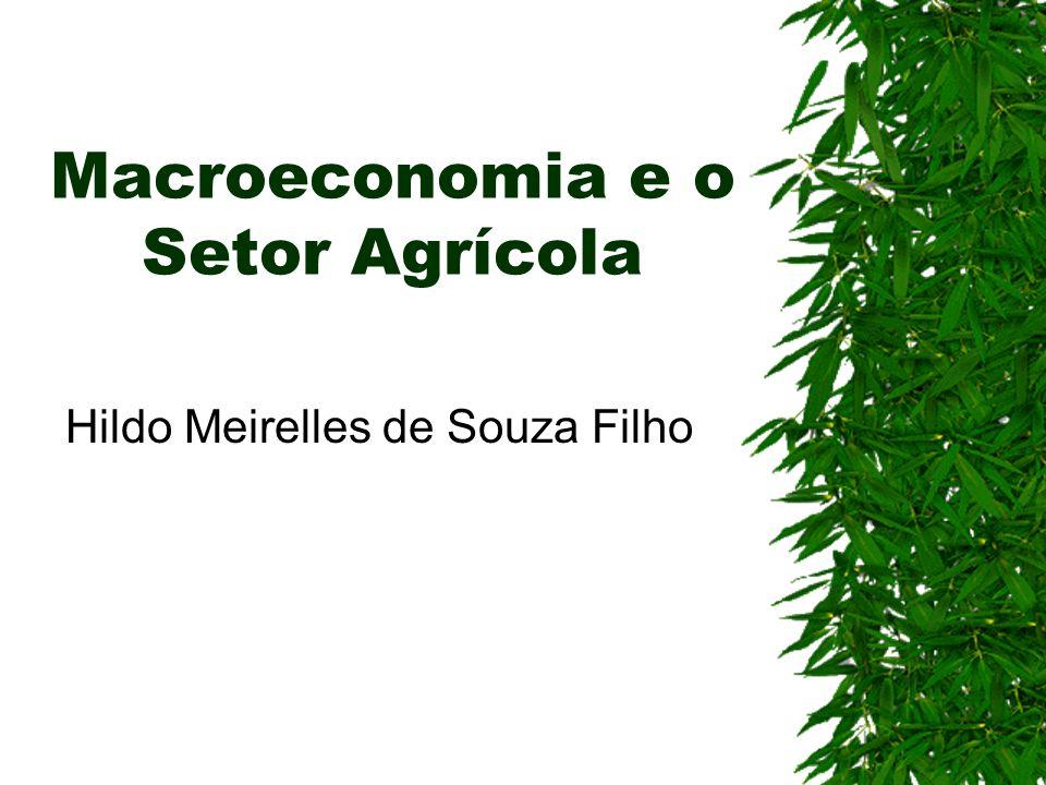 Macroeconomia e o Setor Agrícola Hildo Meirelles de Souza Filho