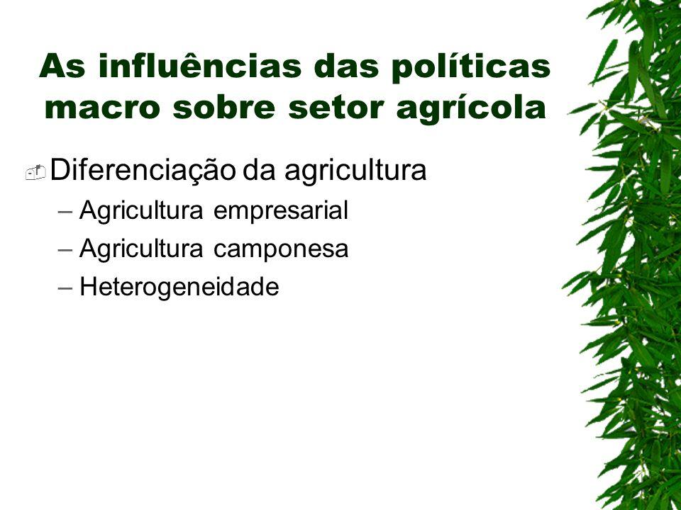 As influências das políticas macro sobre setor agrícola Diferenciação da agricultura –Agricultura empresarial –Agricultura camponesa –Heterogeneidade