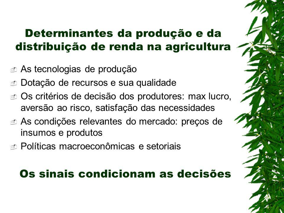 Determinantes da produção e da distribuição de renda na agricultura As tecnologias de produção Dotação de recursos e sua qualidade Os critérios de dec