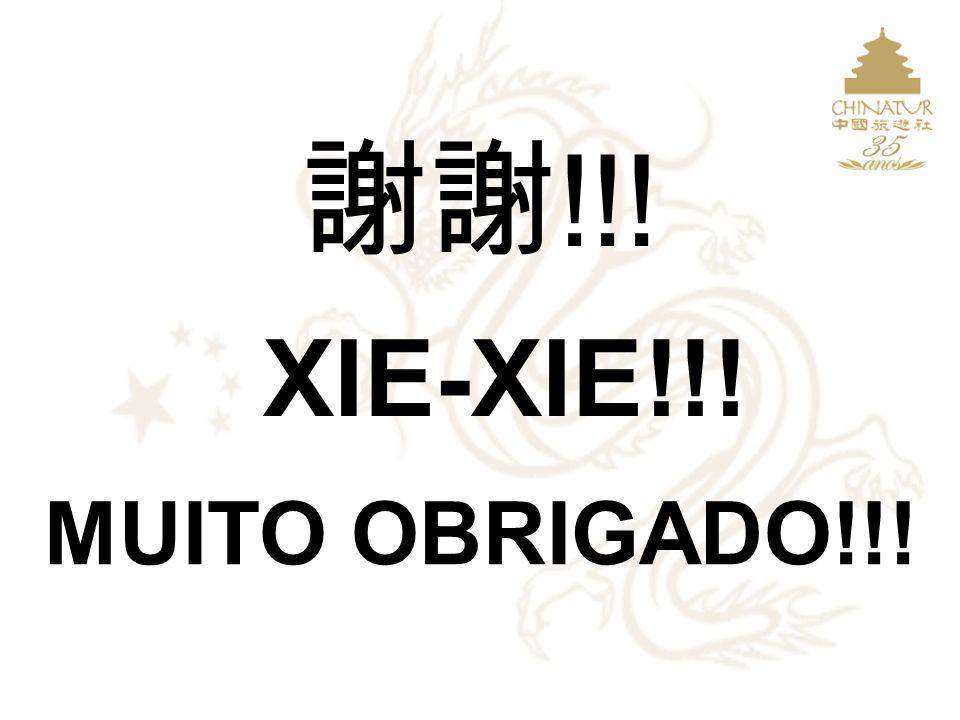 !!! XIE-XIE!!! MUITO OBRIGADO!!! APRESENTAÇÃO ELABORADA PELA SHIH E PELA CHINATUR 2009