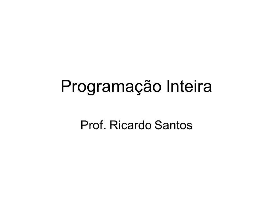 Programação Inteira Prof. Ricardo Santos