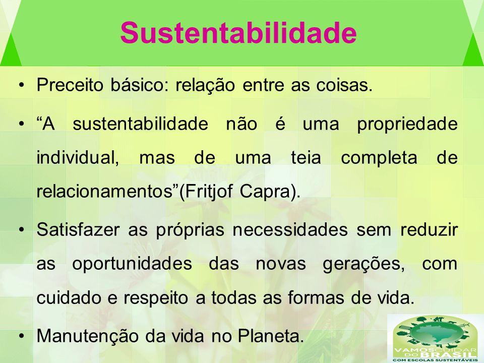 Sustentabilidade Preceito básico: relação entre as coisas. A sustentabilidade não é uma propriedade individual, mas de uma teia completa de relacionam