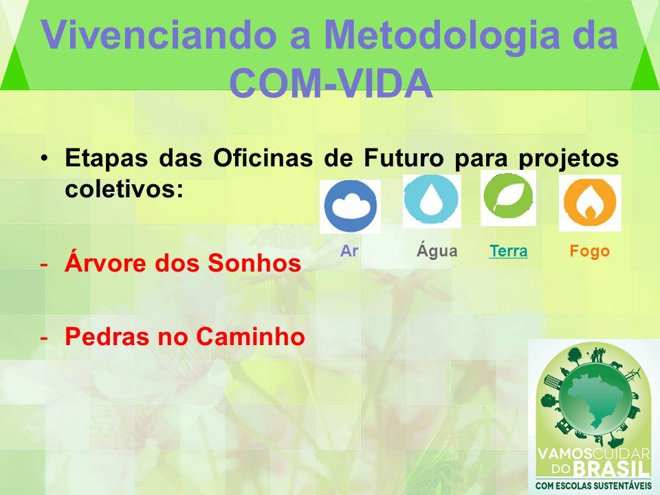 Vivenciando a Metodologia da COM-VIDA Etapas das Oficinas de Futuro para projetos coletivos: -Árvore dos Sonhos -Pedras no Caminho ArÁguaTerraFogo