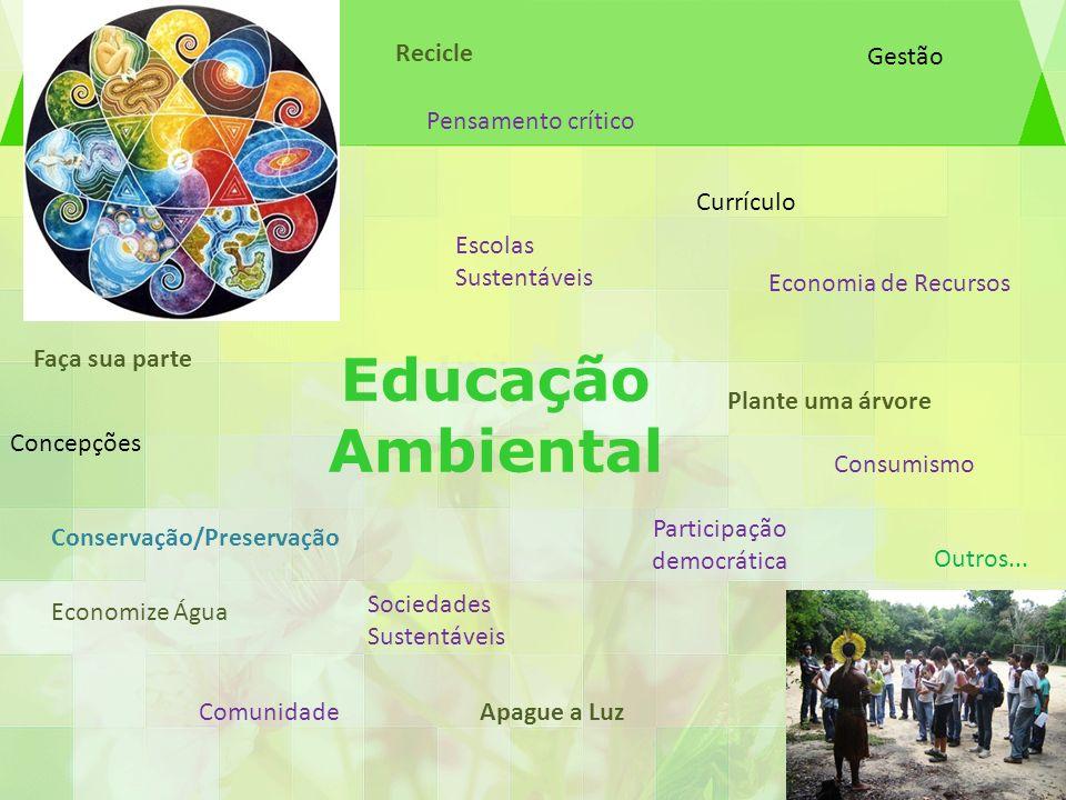 Educação Ambiental Pensamento crítico Concepções Escolas Sustentáveis Sociedades Sustentáveis Economia de Recursos Consumismo Conservação/Preservação
