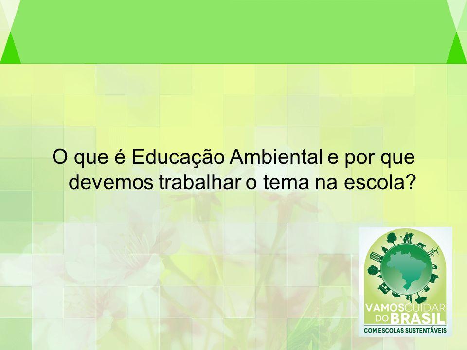 O que é Educação Ambiental e por que devemos trabalhar o tema na escola?
