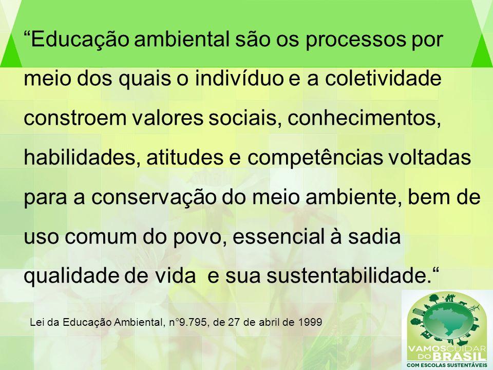 Educação ambiental são os processos por meio dos quais o indivíduo e a coletividade constroem valores sociais, conhecimentos, habilidades, atitudes e