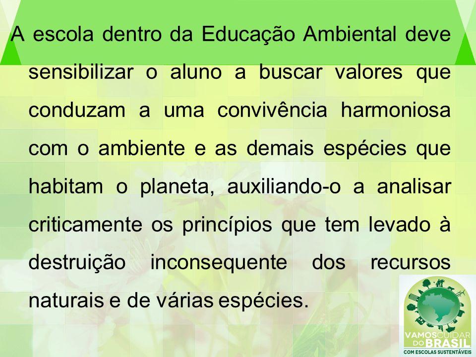 A escola dentro da Educação Ambiental deve sensibilizar o aluno a buscar valores que conduzam a uma convivência harmoniosa com o ambiente e as demais