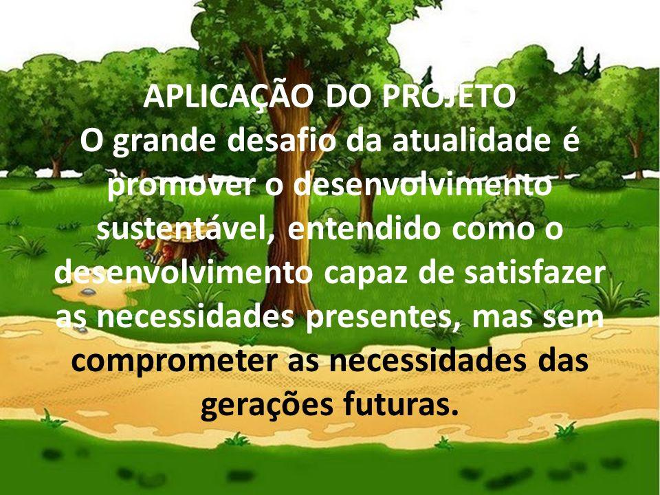 APLICAÇÃO DO PROJETO O grande desafio da atualidade é promover o desenvolvimento sustentável, entendido como o desenvolvimento capaz de satisfazer as