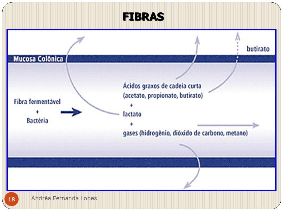 Benefícios das fibras Andréa Fernanda Lopes 19