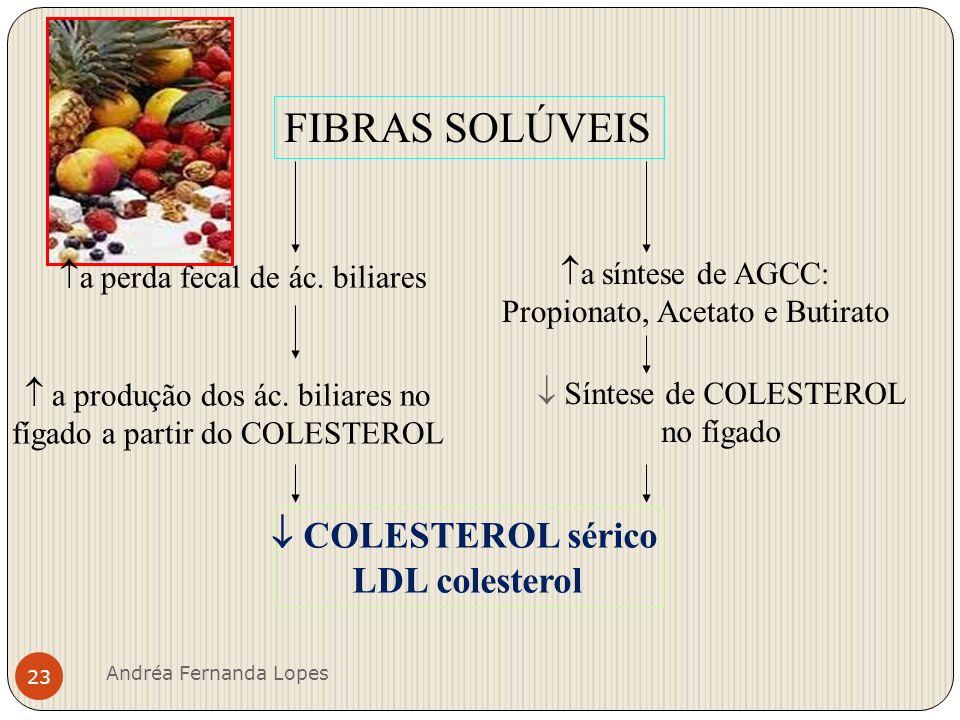 Distribuição alimentar diária Andréa Fernanda Lopes 24