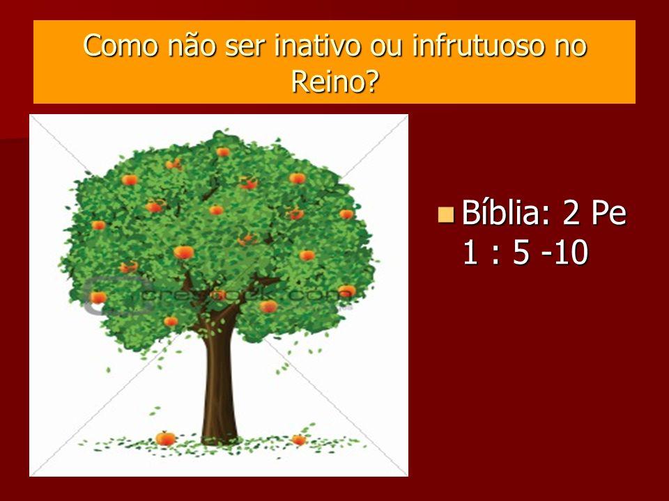 Como não ser inativo ou infrutuoso no Reino? Bíblia: 2 Pe 1 : 5 -10 Bíblia: 2 Pe 1 : 5 -10