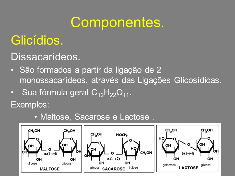 Componentes. Glicídios. Dissacarídeos. São formados a partir da ligação de 2 monossacarídeos, através das Ligações Glicosídicas. Sua fórmula geral C 1