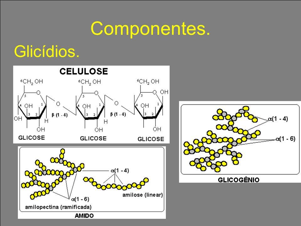 Glicídios Oses ou monossacarídeos: glicose, frutose, galactose Osídios (hidrolisáveis): Dissacarídeos ou polissacarídeos CRITÉRIO: SOFRER OU NÃO HIDRÓLISE
