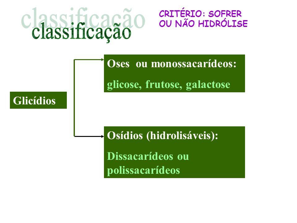 Glicídios Oses ou monossacarídeos: glicose, frutose, galactose Osídios (hidrolisáveis): Dissacarídeos ou polissacarídeos CRITÉRIO: SOFRER OU NÃO HIDRÓ