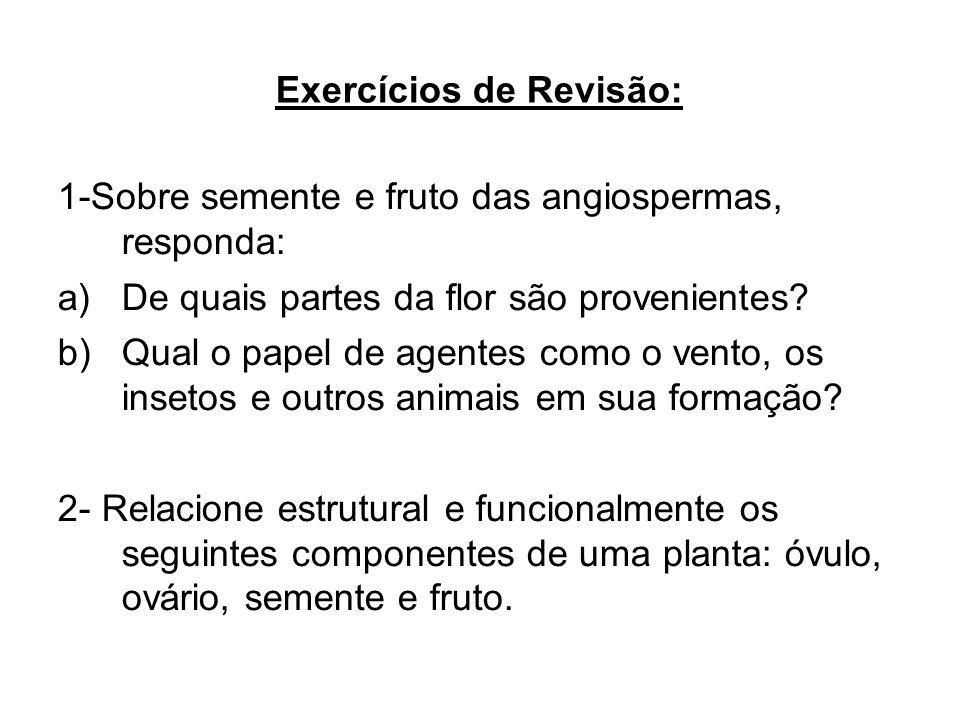 Exercícios de Revisão: 1-Sobre semente e fruto das angiospermas, responda: a)De quais partes da flor são provenientes? b)Qual o papel de agentes como