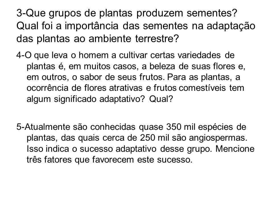3-Que grupos de plantas produzem sementes? Qual foi a importância das sementes na adaptação das plantas ao ambiente terrestre? 4-O que leva o homem a