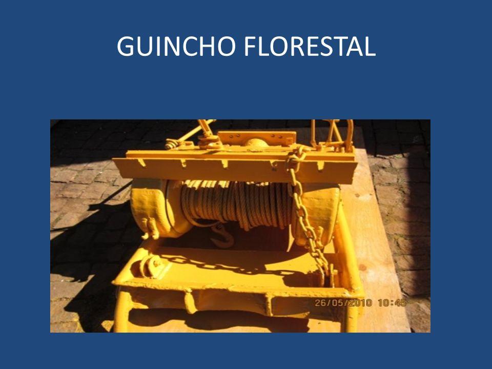 GUINCHO FLORESTAL