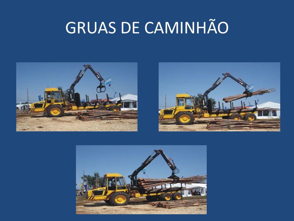 GRUAS DE CAMINHÃO