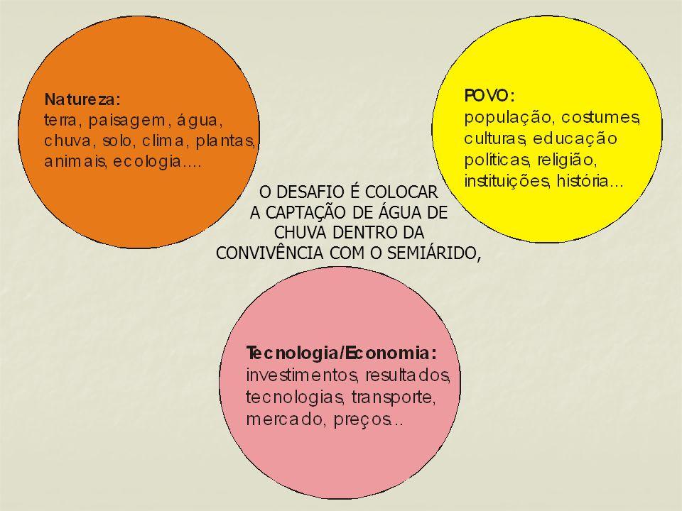 O IRPAA - Instituto Regional da Pequena Agropecuária Apropriada é uma organização não governamental sediada em Juazeiro, na Bahia.