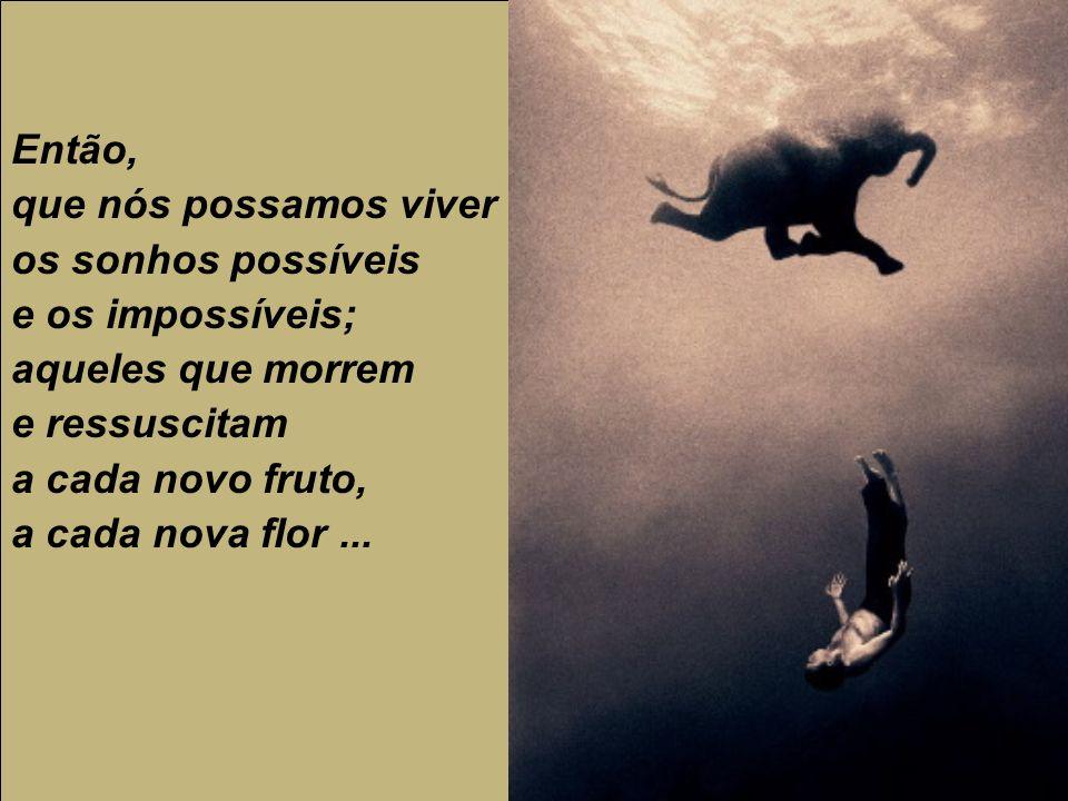 Então, que nós possamos viver os sonhos possíveis e os impossíveis; aqueles que morrem e ressuscitam a cada novo fruto, a cada nova flor...