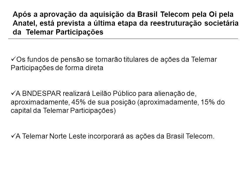 Após a aprovação da aquisição da Brasil Telecom pela Oi pela Anatel, está prevista a última etapa da reestruturação societária da Telemar Participaçõe