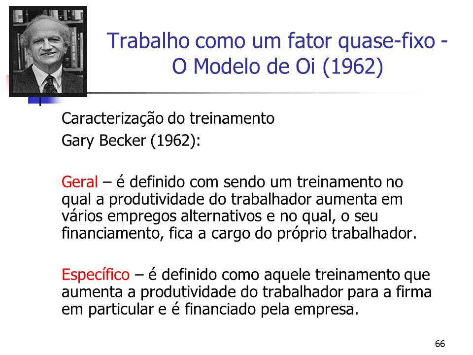 66 Trabalho como um fator quase-fixo - O Modelo de Oi (1962) Caracterização do treinamento Gary Becker (1962): Geral – é definido com sendo um treinam