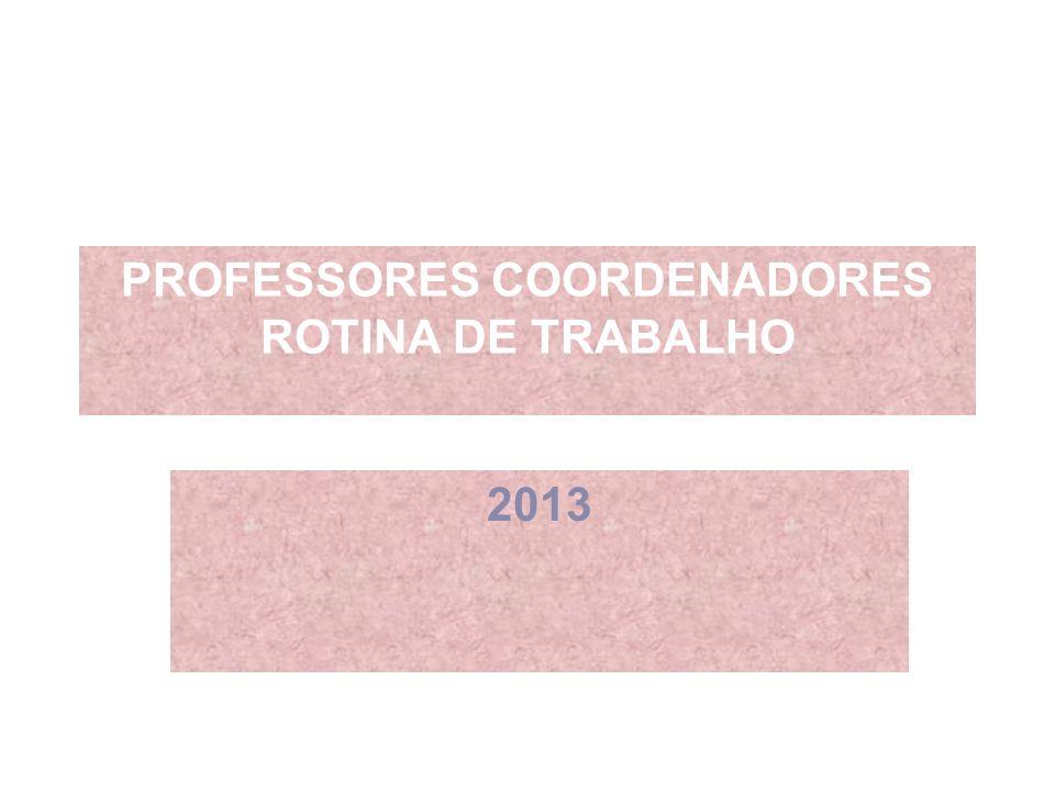 PROFESSORES COORDENADORES ROTINA DE TRABALHO 2013