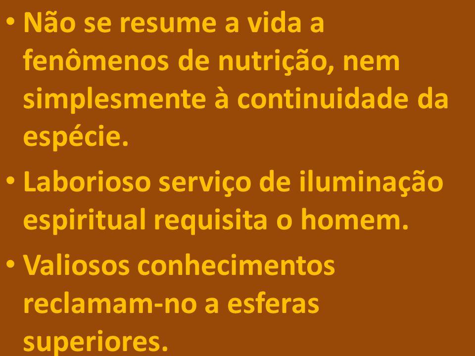 Não se resume a vida a fenômenos de nutrição, nem simplesmente à continuidade da espécie. Laborioso serviço de iluminação espiritual requisita o homem
