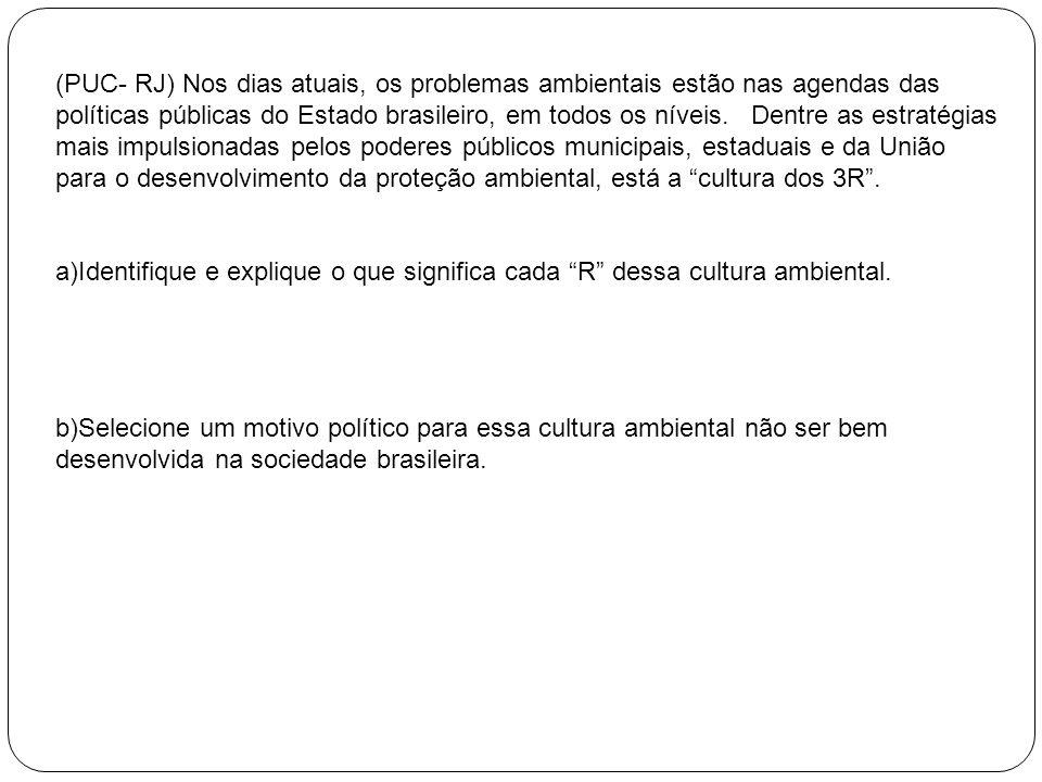(PUC- RJ) Nos dias atuais, os problemas ambientais estão nas agendas das políticas públicas do Estado brasileiro, em todos os níveis. Dentre as estrat